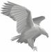 kawa logo2
